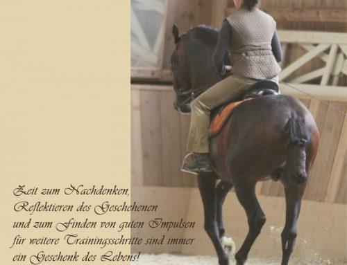 Dankbarkeit und Freude mit dem Pferd