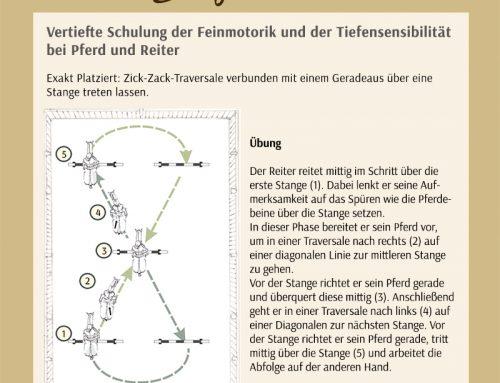 23. Übung – Zick-Zack-Traversale – Koordination und Timing