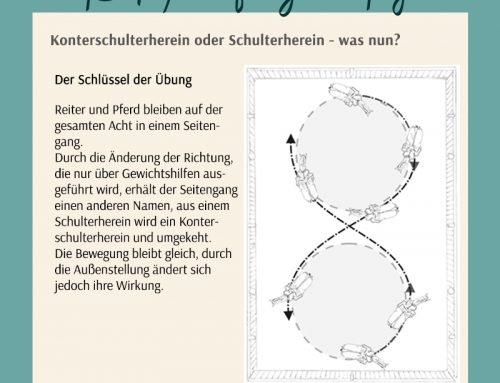 9. Konterschulterherein – Schulterherein- was nun?