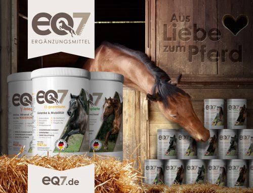 Ergänzungsfuttermittel von eQ7 in der täglichen Anwendung