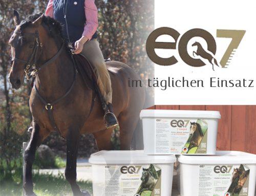 eQ7 im täglichen Einsatz